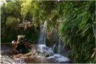 Mein erster Wasserfall