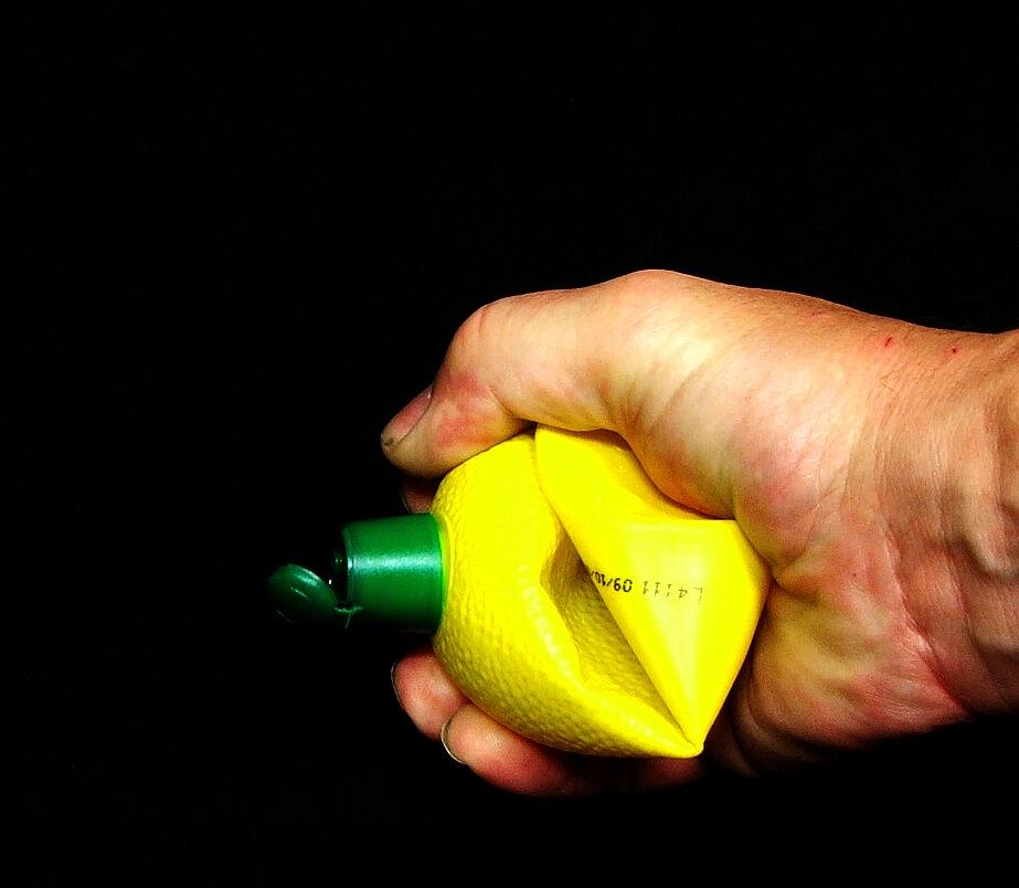 Mein erster Zitronenfalter!