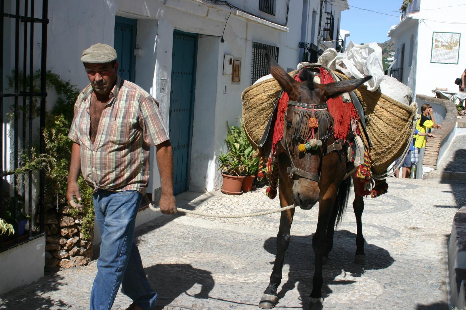 Mein Esel und ich