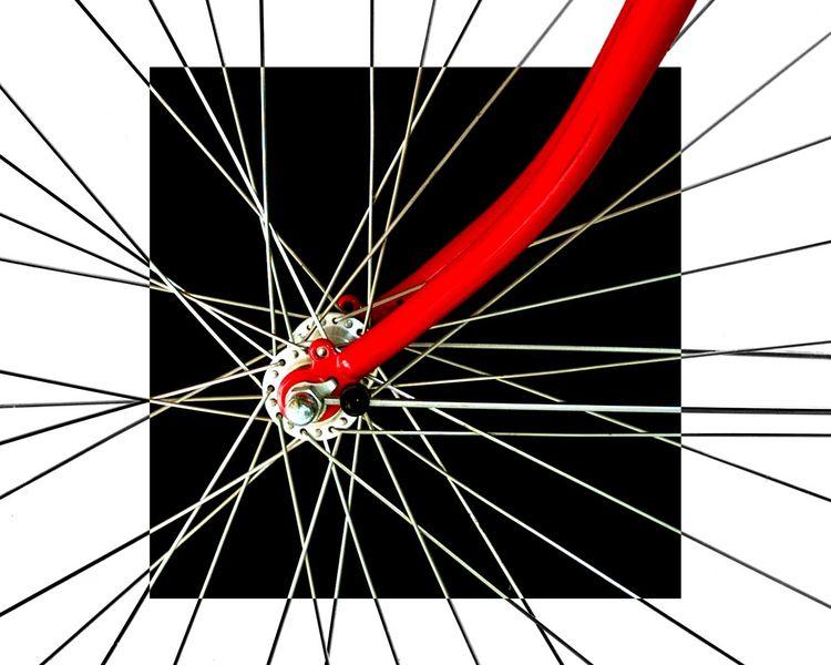 Mein Fahrrad 1