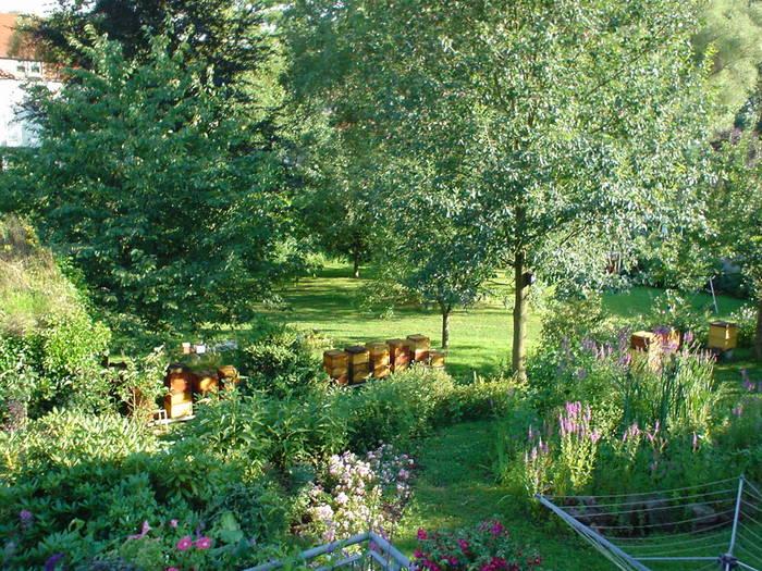 mein garten foto bild landschaft natur bilder auf fotocommunity. Black Bedroom Furniture Sets. Home Design Ideas