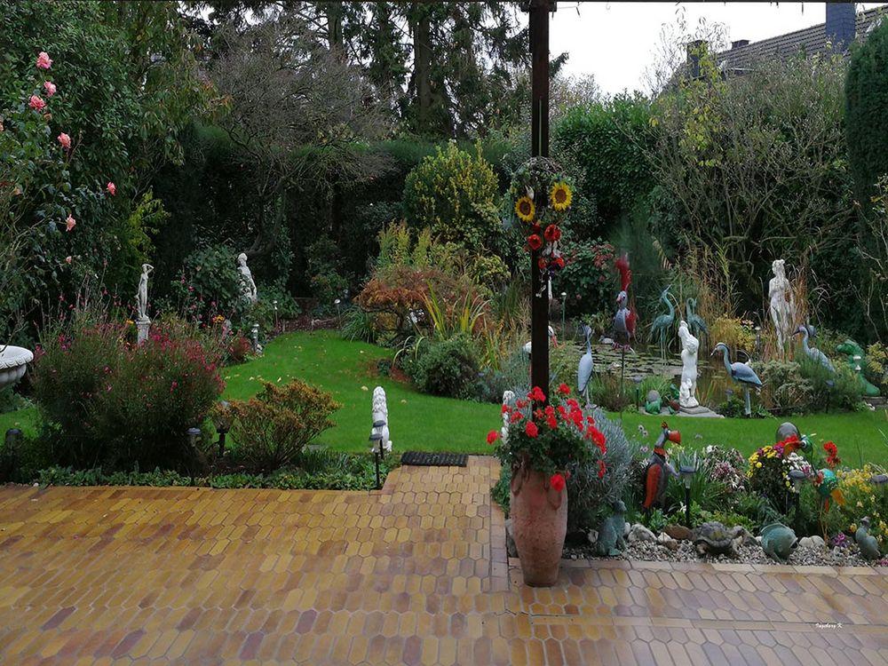 Mein Garten am 17.11.18.