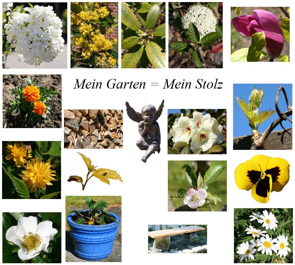 Mein Garten = Mein Stolz