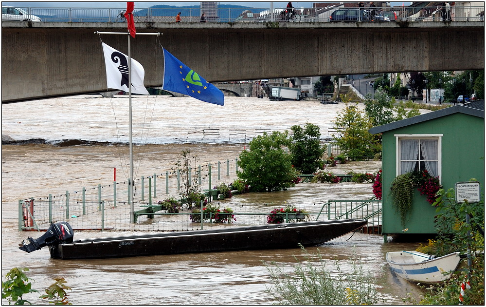 ... mein Garten schwimmt im Rhein ...