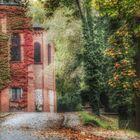 mein Herbst _ 6