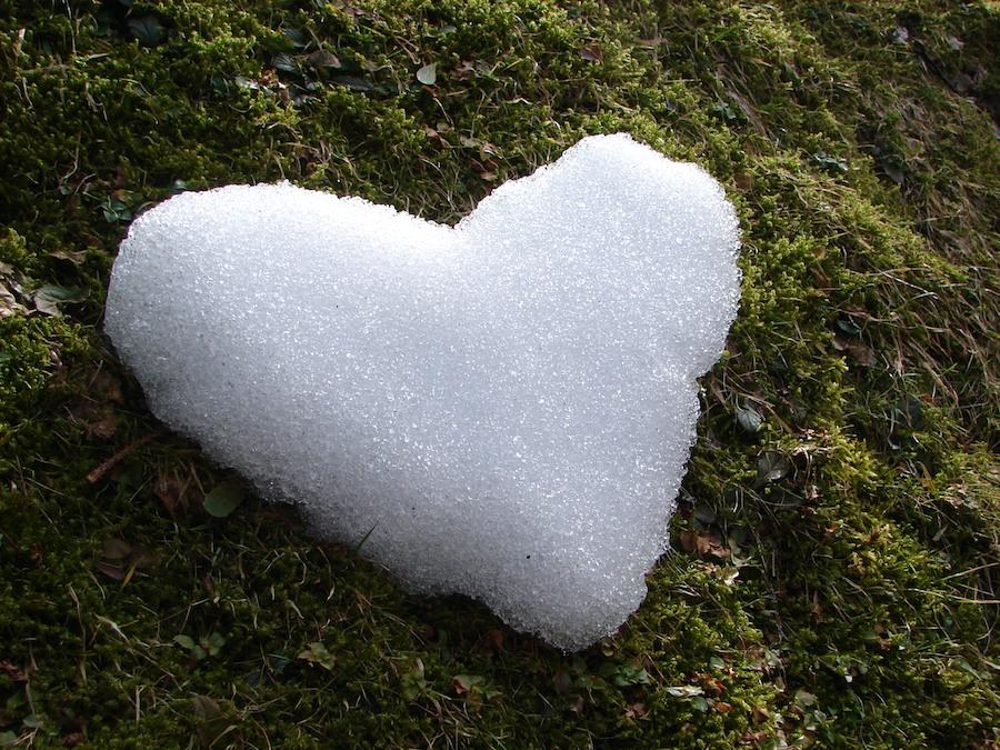 (M)ein Herz für den Winter