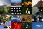 mein Jahr in Bildern