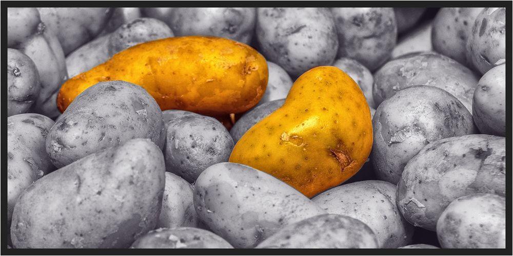 Mein Kartoffelsalat