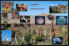 ...Mein kleiner grüner Kaktus...;o)))