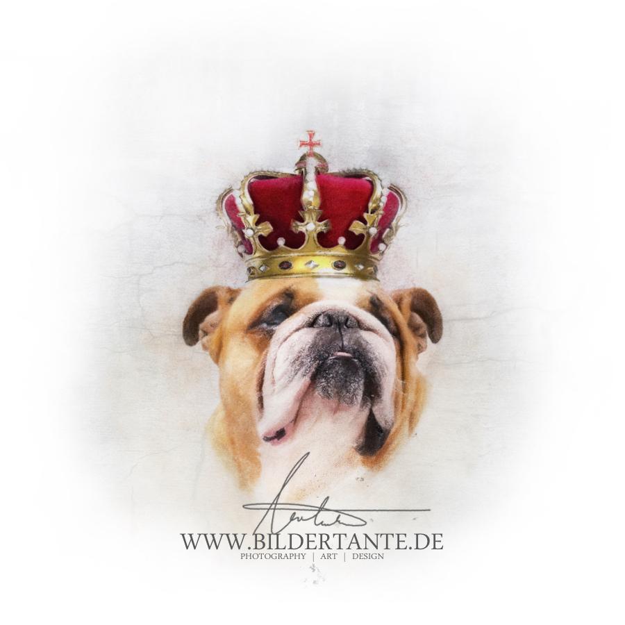 Mein König!