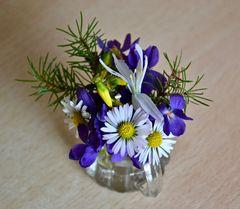 Mein Mittwochsblümchen zum heutigen Frühlingsanfang…