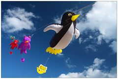 Mein Pinguin kann fliegen!