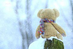 """""""Mein Popo friert, ich glaube, es ist Winter."""""""