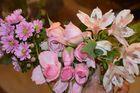 Mein rosa Traum