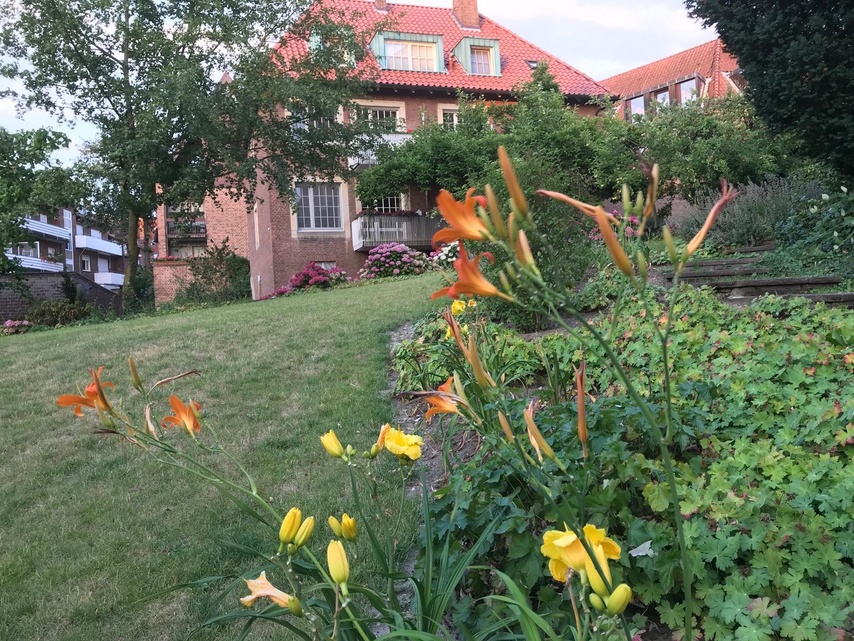 Mein schöner Garten Foto & Bild | landschaft, jahreszeiten ...