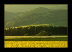 Mein schönes Weserbergland... (8. DER REIHE: WAS MAN MIT RAPS...)