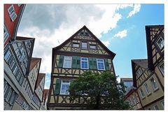 MEIN Schwäbisch Hall - Nr. 14
