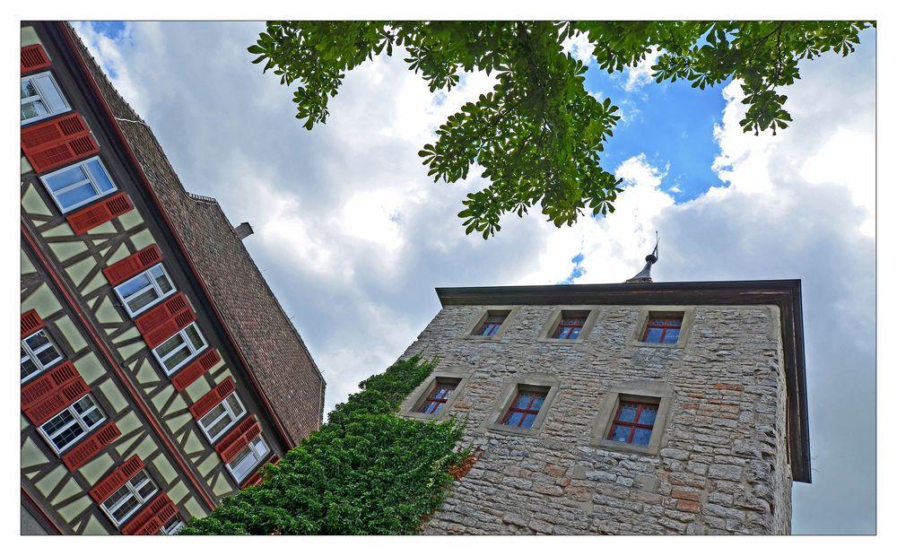MEIN Schwäbisch Hall - Nr. 8