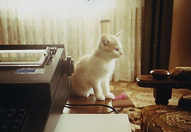 mein Sekretär....