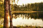 Mein Sommer in Schweden auf Öland