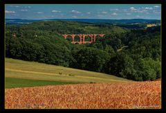 Mein Vogtland