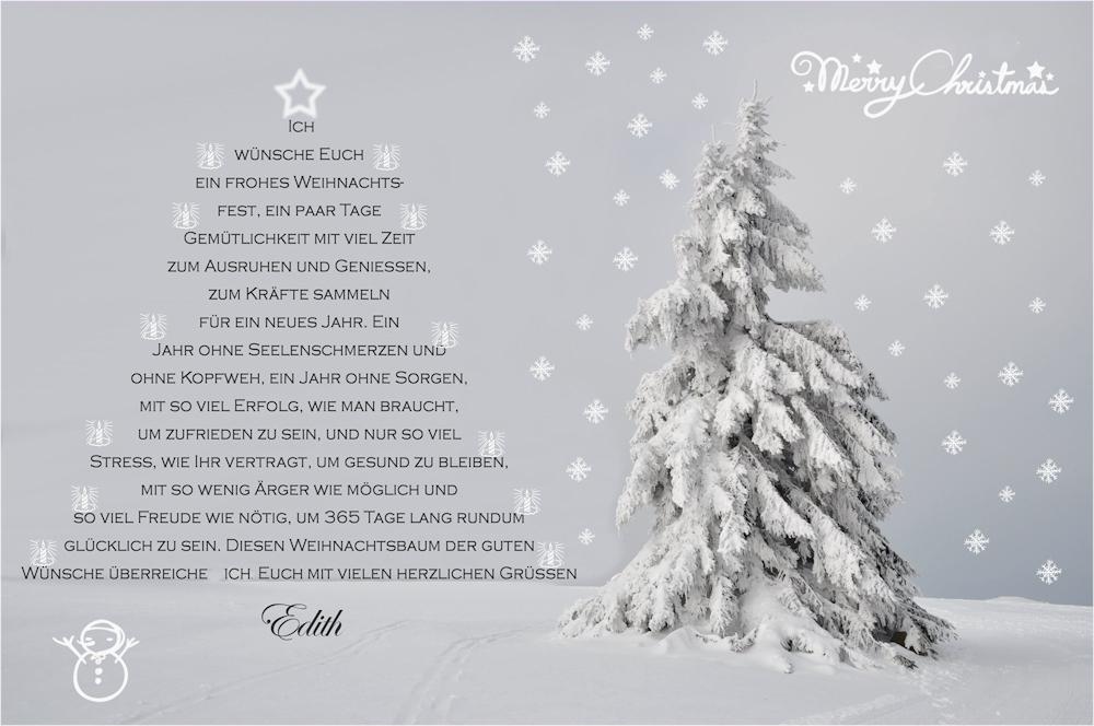 mein weihnachtsbaum f r dich foto bild gratulation und. Black Bedroom Furniture Sets. Home Design Ideas