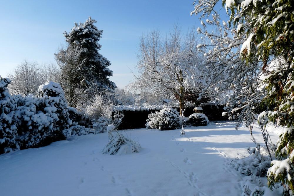 mein winter garten foto bild jahreszeiten winter natur bilder auf fotocommunity. Black Bedroom Furniture Sets. Home Design Ideas