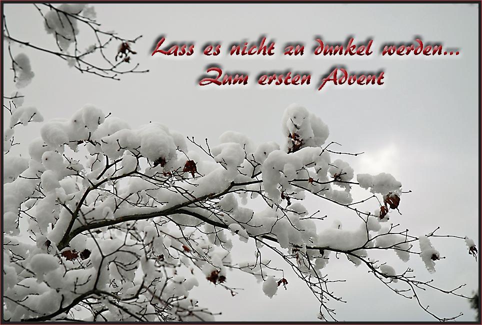 Mein Wunsch zum 1. Advent Foto & Bild | gratulation und feiertage ...