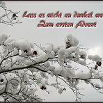 Mein Wunsch zum 1. Advent