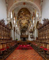 """Mein""""Blick nach Westen"""" in der Pfarrkirche  St.Magnus in Bad Schussenried"""