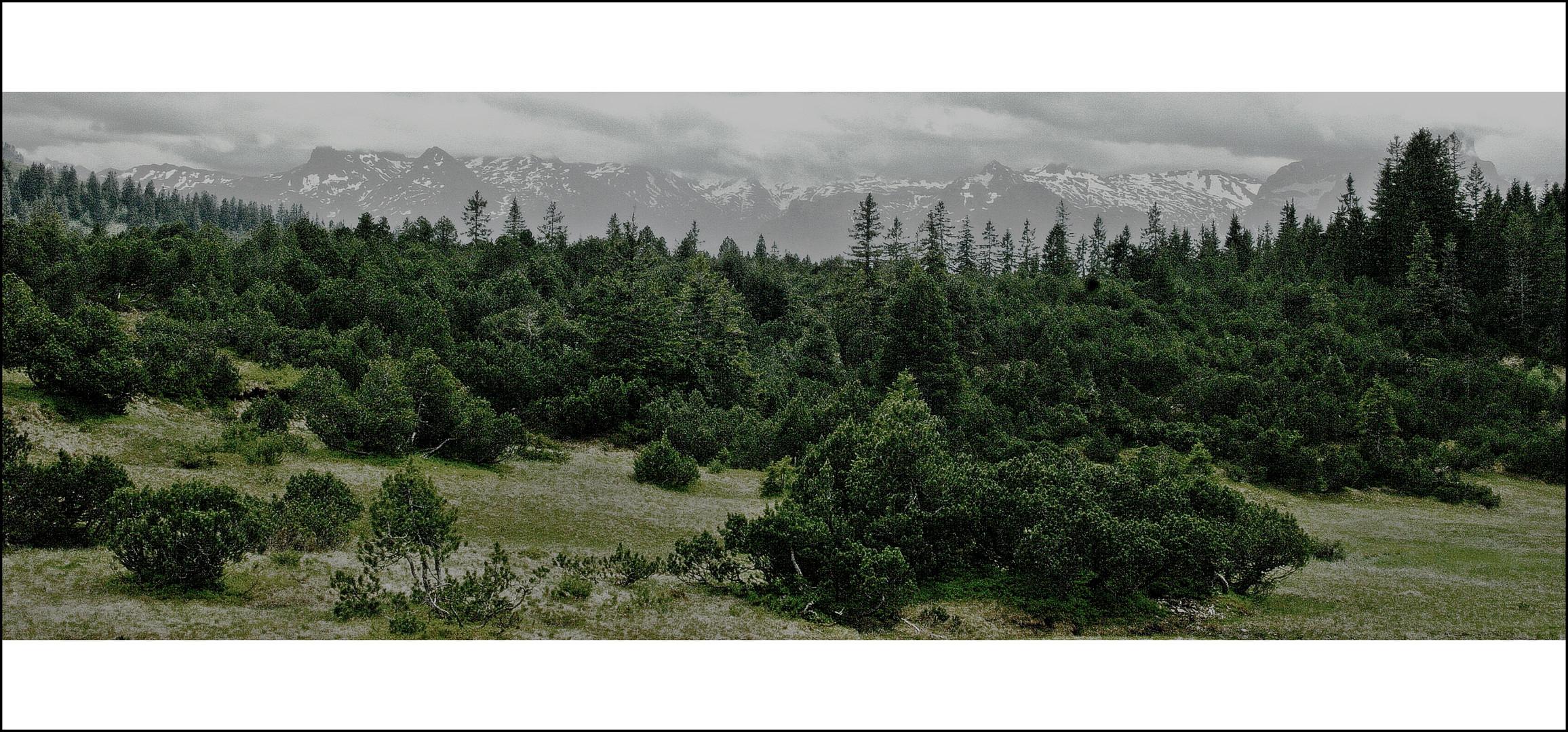 Meine Bergwelt (das Letzte)