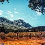 ...meine Erinnerung an Südafrika