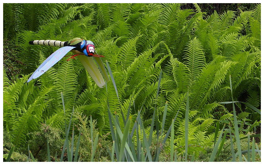 ...meine erste Libelle 2008...jabbadabbaduu...