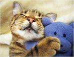 Meine geliebte Mizzi
