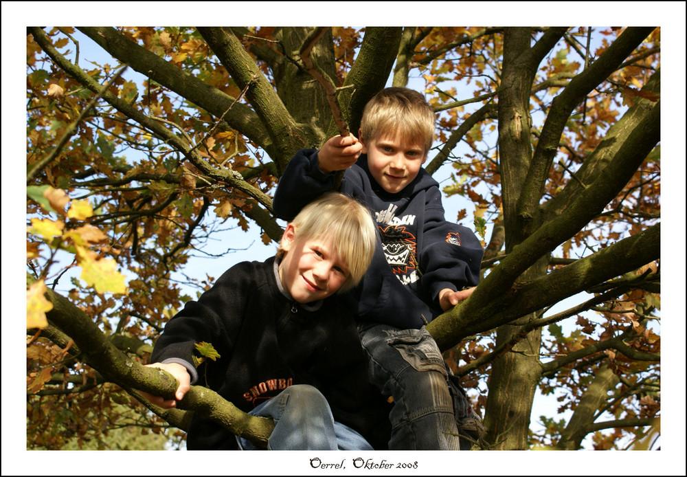Meine Kids im Baum