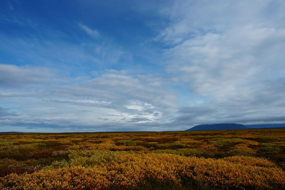 Meine persönlich bevorzugte Reisezeit in Island: Nicht nur wegen den Herbstfarben…..