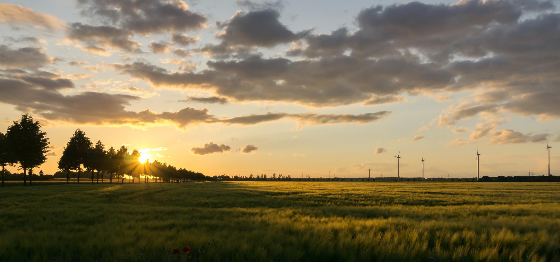 Meine Sicht der untergehenden Sonne