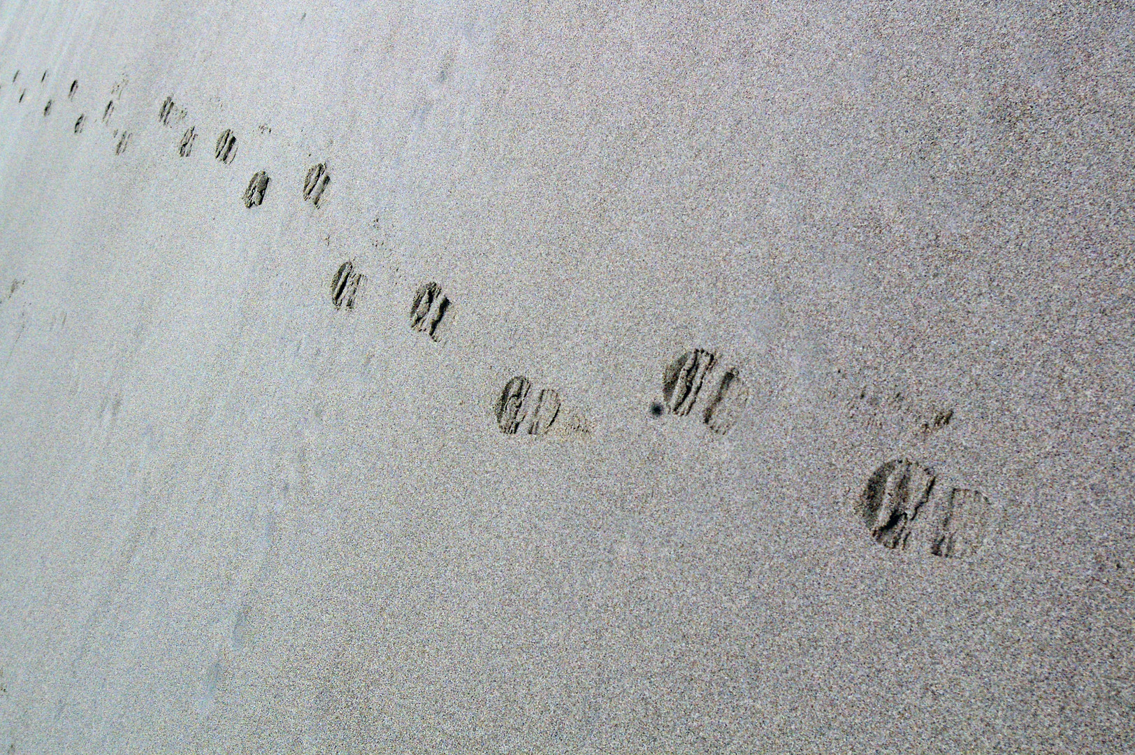 Meine Spuren im Sand .........................