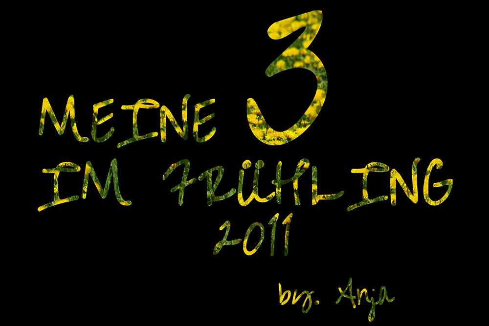 * Meine Top 3 im Frühling 2011... *