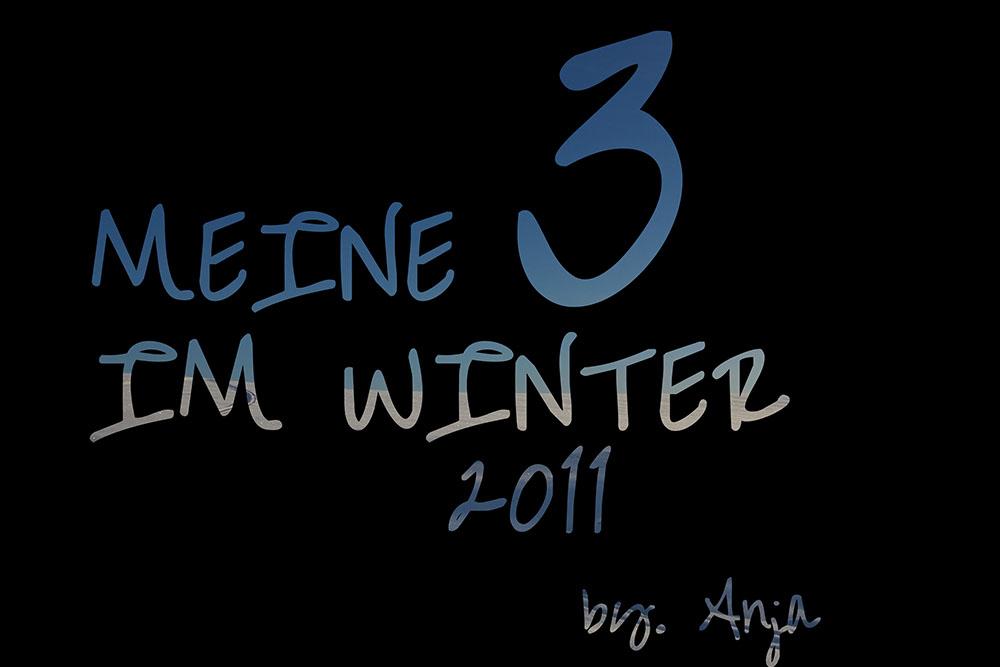 * Meine Top 3 im Winter ... 2011*