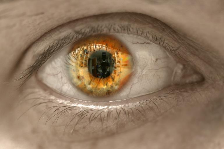 Meine Welt im Auge