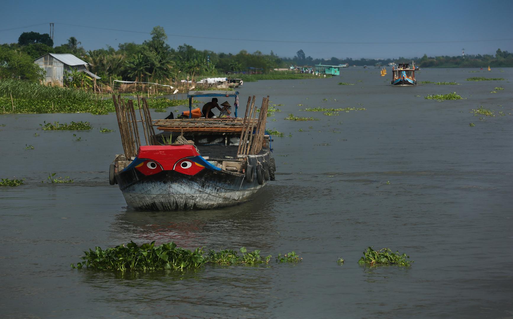 Mekong, Aschetransporter