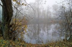 Melancholie eines trüben Herbsttages