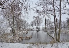 Melancholie eines trüben Wintertages