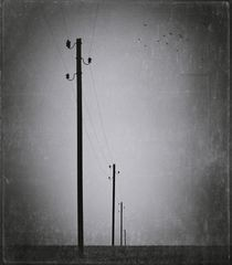 melancholy fields...