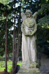 Melatenfriedhof / Köln 03