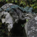 Melatenfriedhof Köln 12