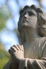 Melatenfriedhof / Köln 14