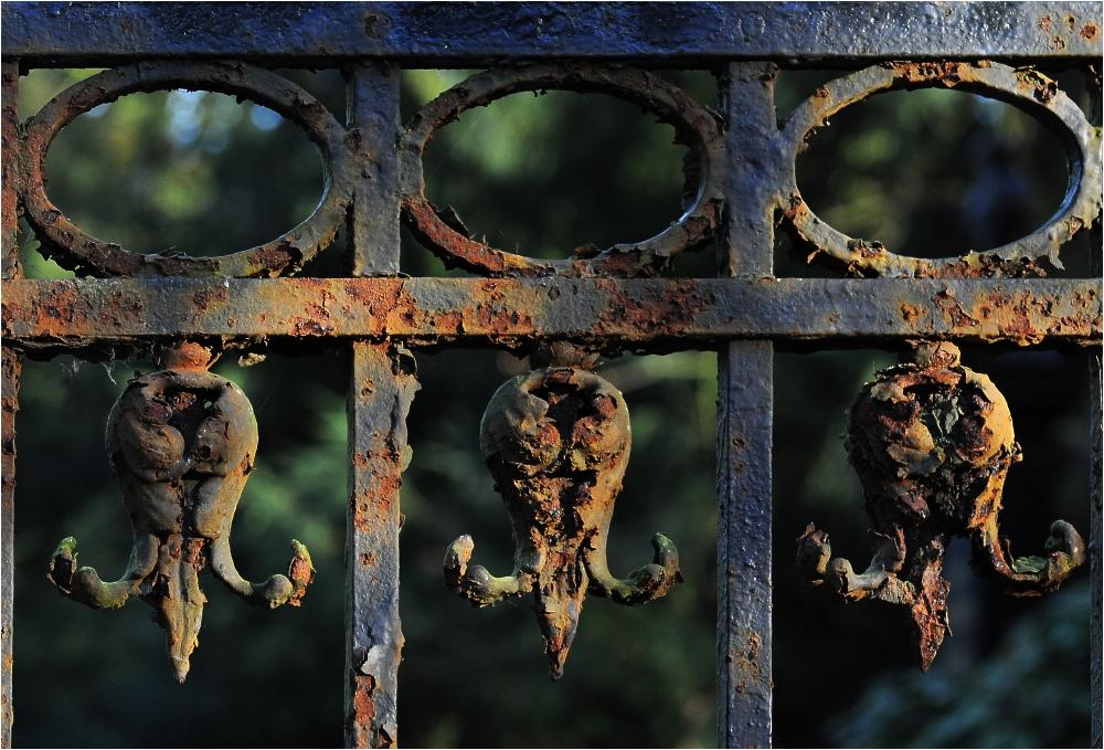 Melatenfriedhof Köln 14
