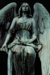 Melatenfriedhof Köln - 6